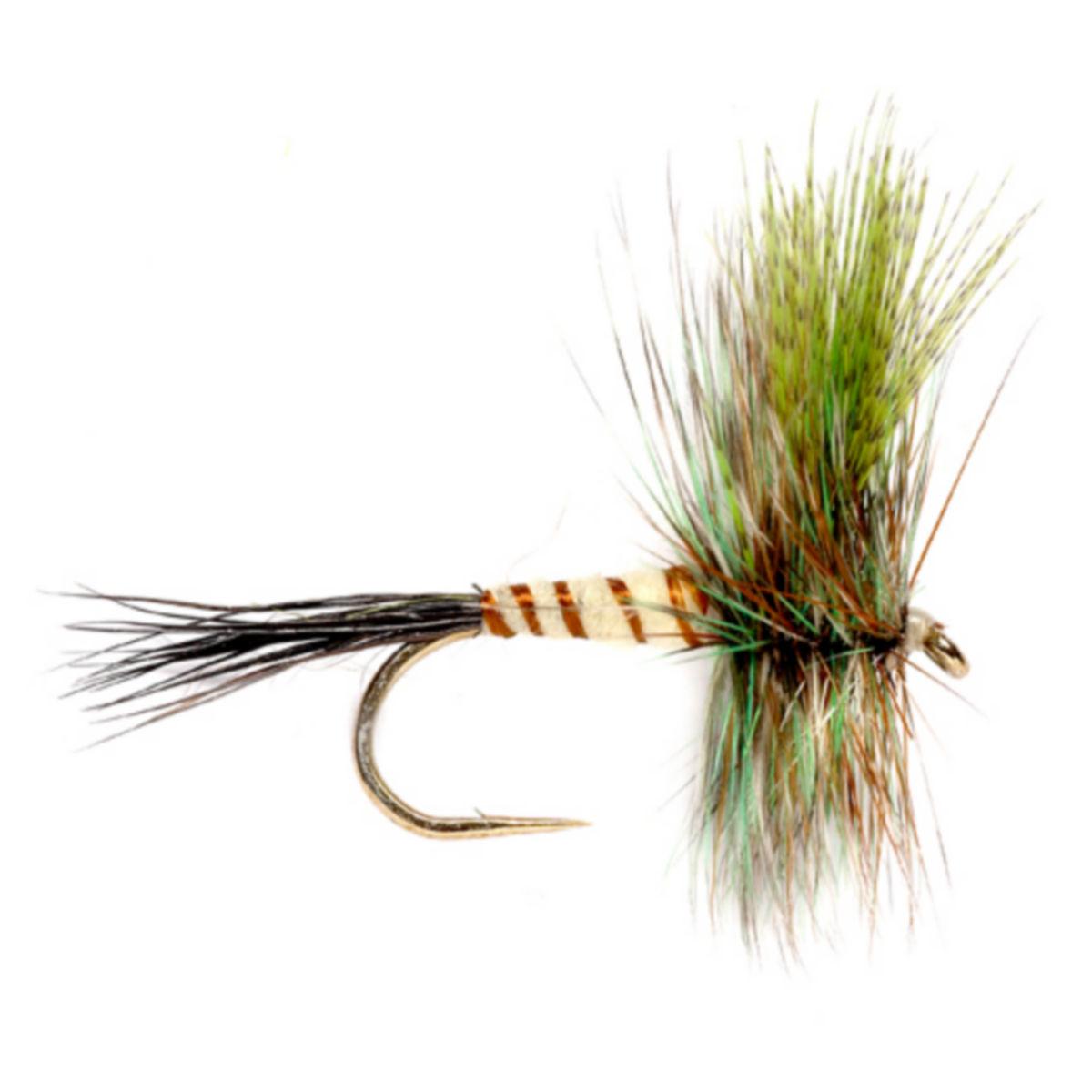 Eastern Green Drake - NATURALimage number 0