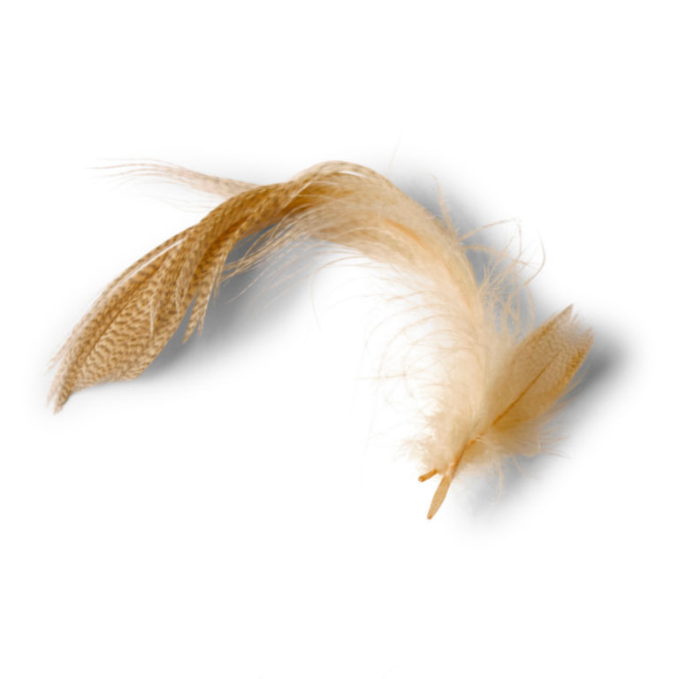 Mallard Duck Side Feathers -  image number 0