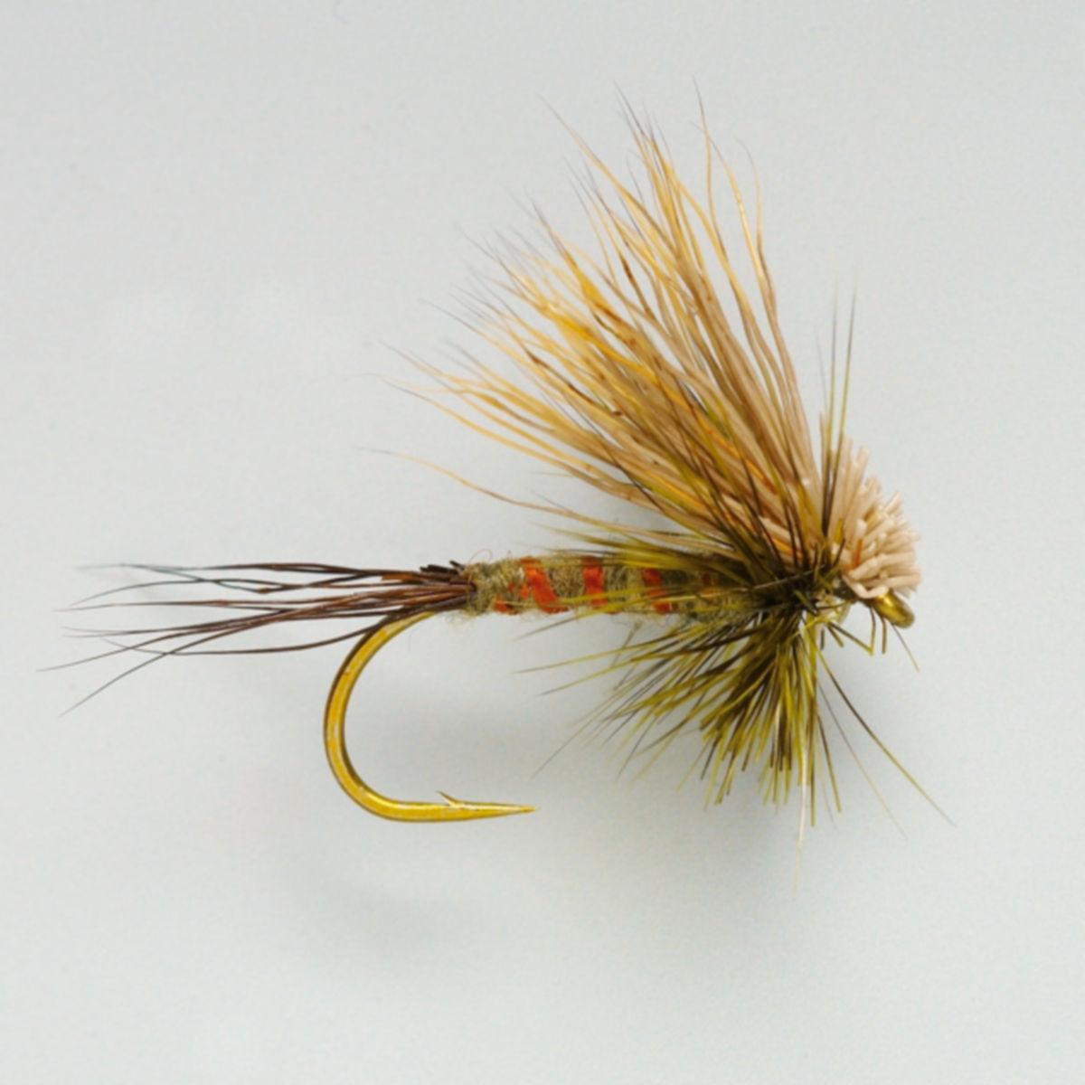 Hairwing Western Green Drake - image number 0