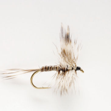 Mosquito Dry Fly -