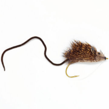 Mouse Rat -  image number 0
