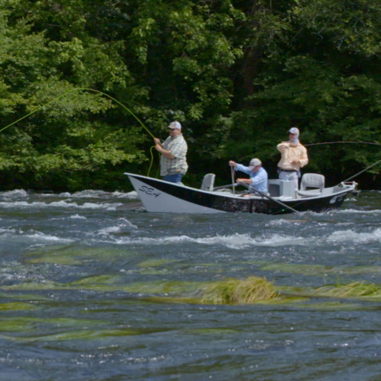 Southeastern Anglers, TN -  image number 3