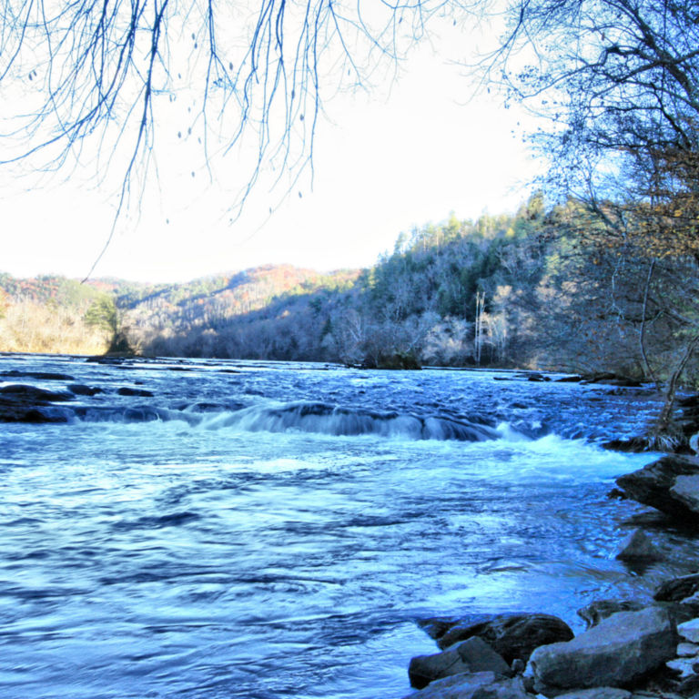Southeastern Anglers, TN -  image number 4