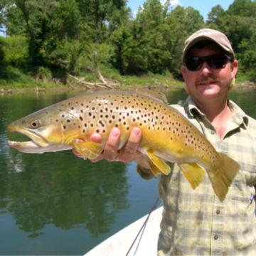 Southeastern Anglers, TN -  image number 0