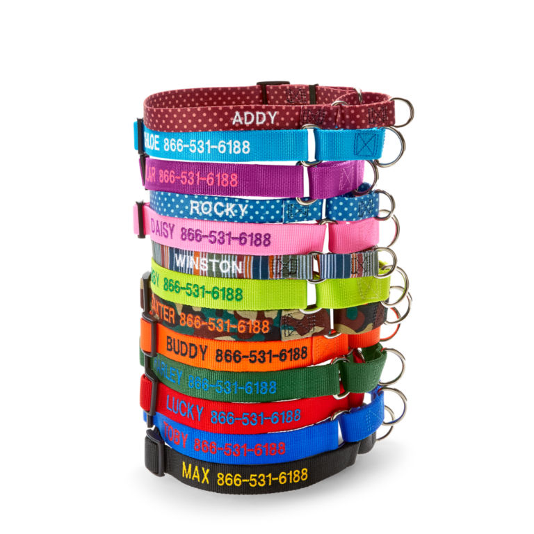 Personalized Martingale No-Pull Collar -  image number 0
