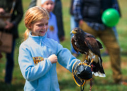 A young girl holding a falcon on her arm