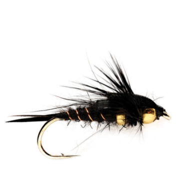 Tunghead Stonefly -  image number 0
