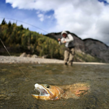 Out Fly Fishing Outfitters, AB -  image number 4
