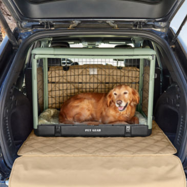 Collapsible Dog Travel Crate -