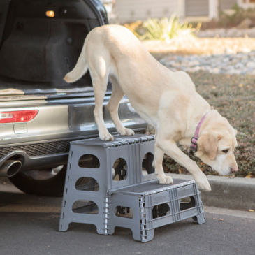 Pet Step Folding 2-Step Assist -