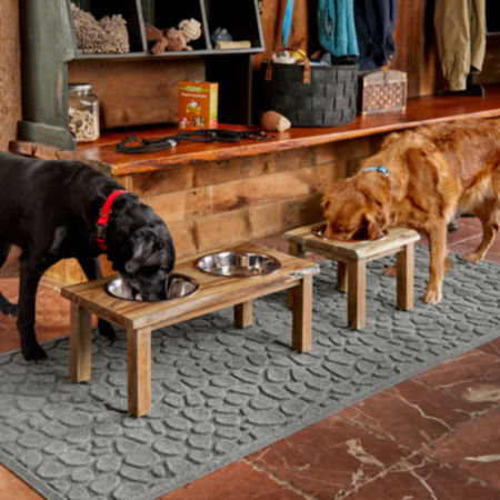 Two dogs in a house eating food out of raised feeders
