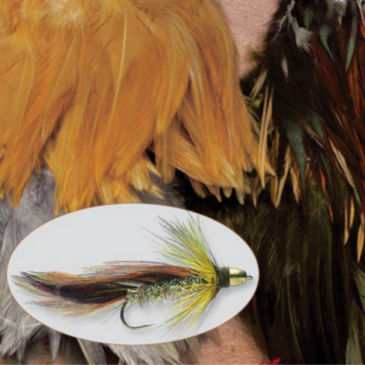 Select Saddle Hackle -
