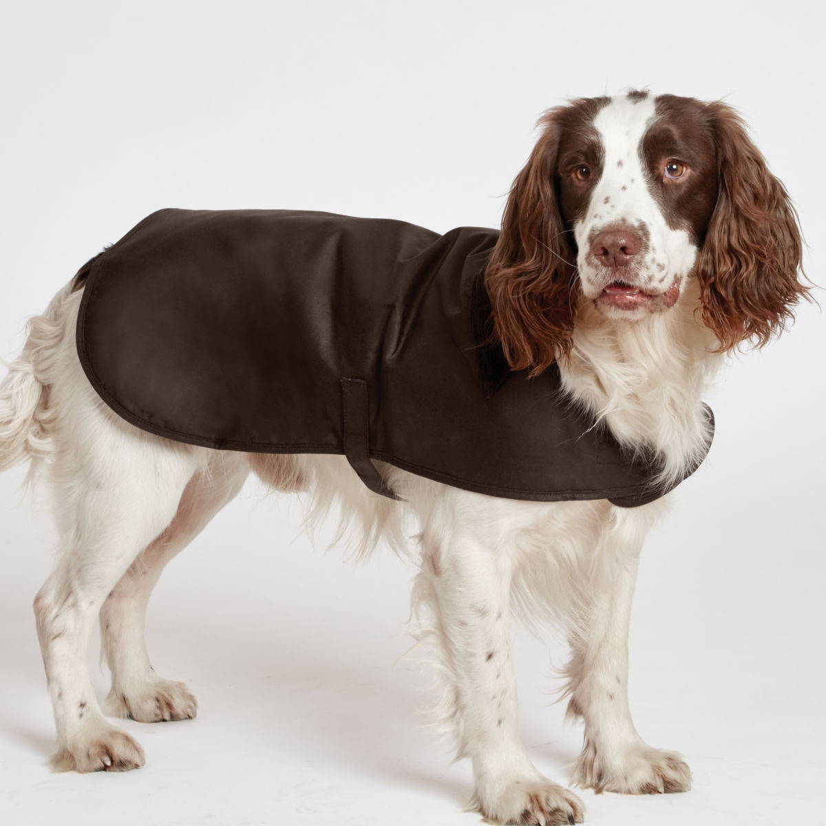 Barbour® Waxed-Cotton Dog Jacket - image number 0