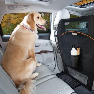 Backseat Barrier -