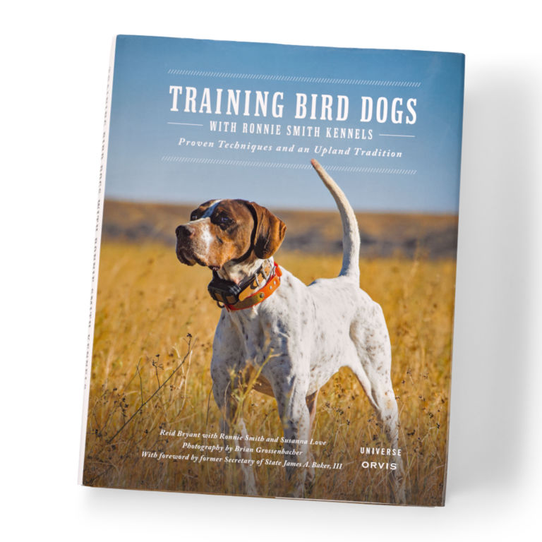 Training Bird Dogs With Ronnie Smith Kennels -  image number 0