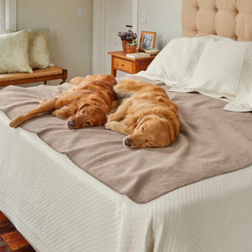 two dogs laying on a bed on top of a throw blanket