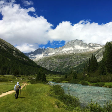 Italy On The Fly -