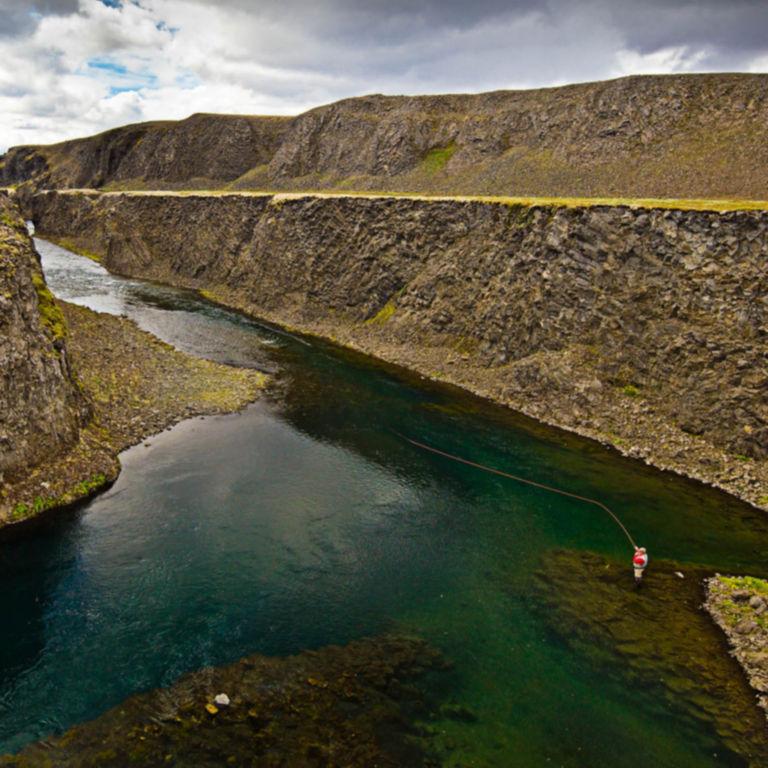 Fish Partner, Iceland -  image number 2