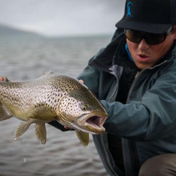 Fish Partner, Iceland -  image number 5