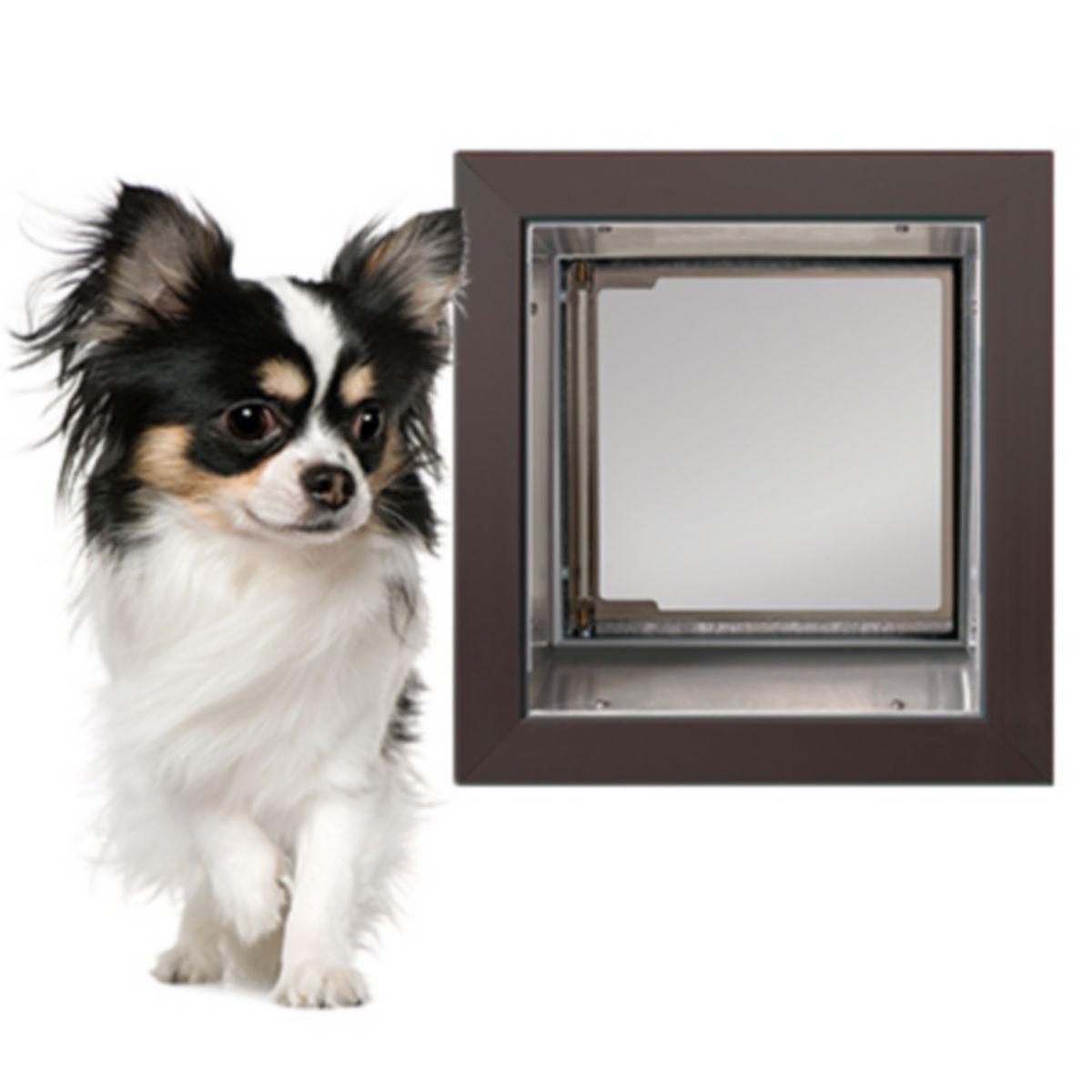 Wall-Mount Dog Door - image number 0