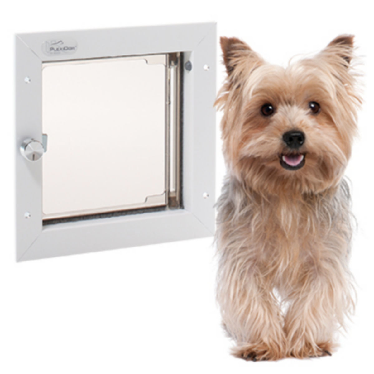Dog Doors - image number 0