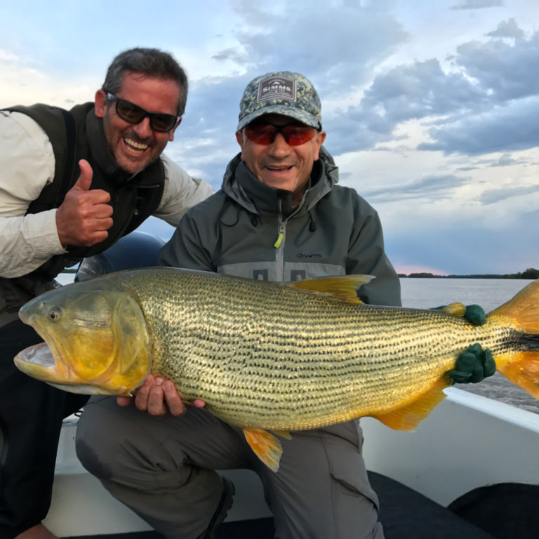 Dorados on the Fly -  image number 0