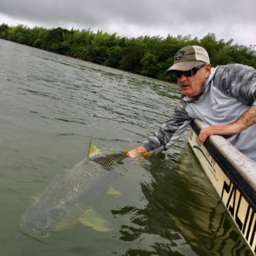 Dorados on the Fly -  image number 2