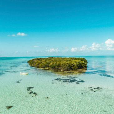 Belize Bonefish Bonanza -