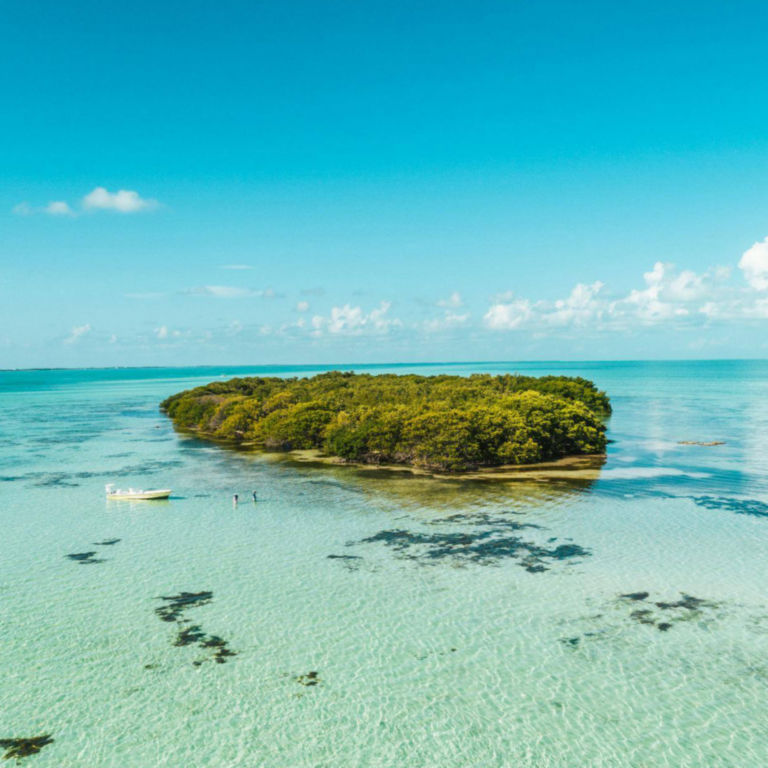 Belize Bonefish Bonanza -  image number 0
