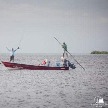 Belize Bonefish Bonanza -  image number 2