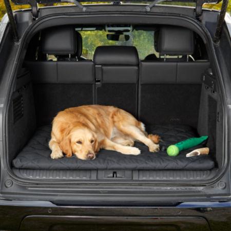 dog on a Hose-Off Cargo Travel Bed