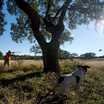 Joshua Creek Ranch, TX -
