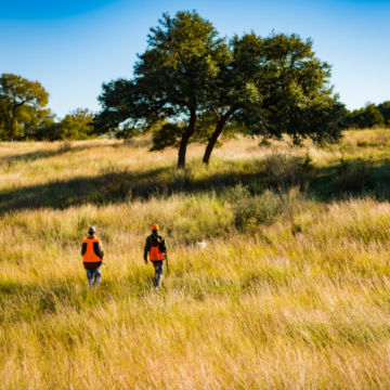 Joshua Creek Ranch, TX -  image number 3
