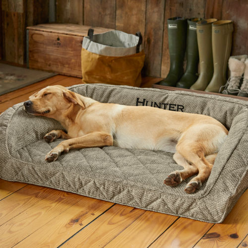 Yellow lab laying on a Memory Foam dog bed