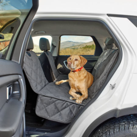 dog in backseat on a seat protector