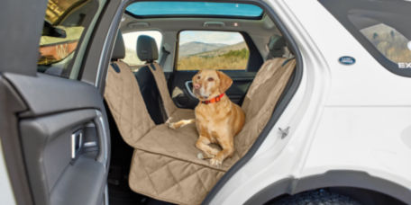 Yellow lab sitting in a car on the Grip-Tight seat protector