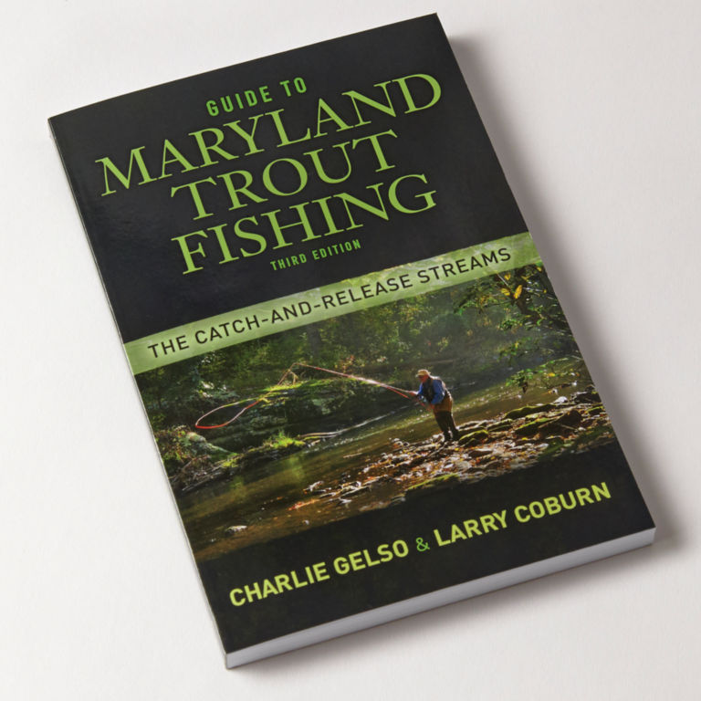 Guide to Maryland Trout Fishing: The Catch and Release Streams -  image number 0