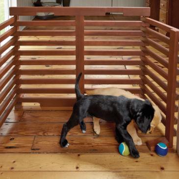 Fold-Up Dog Gate -