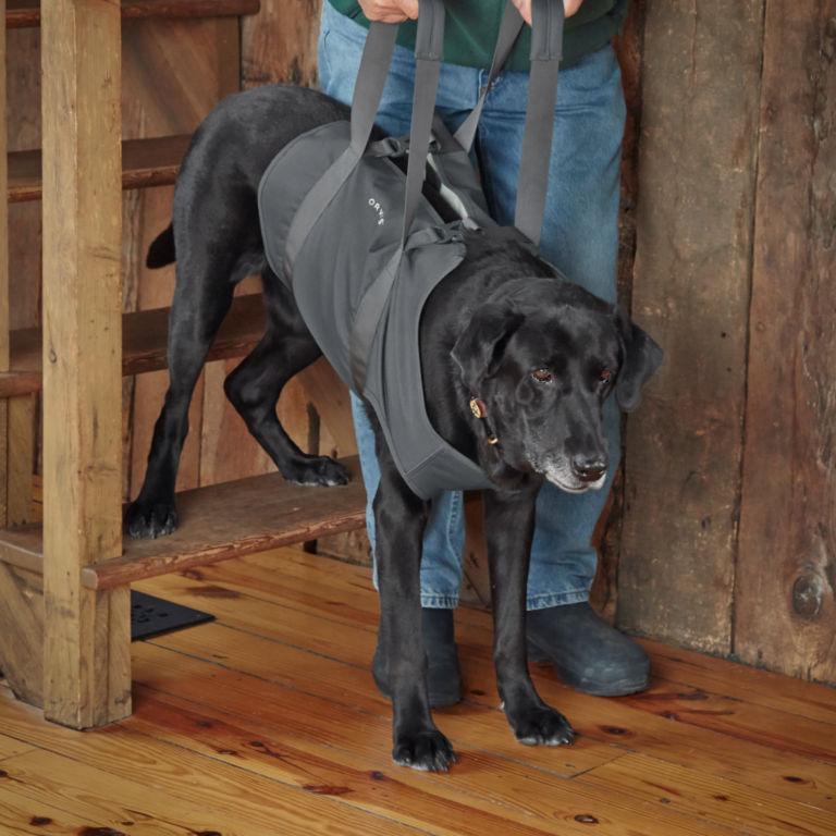 Dog Lift -  image number 1