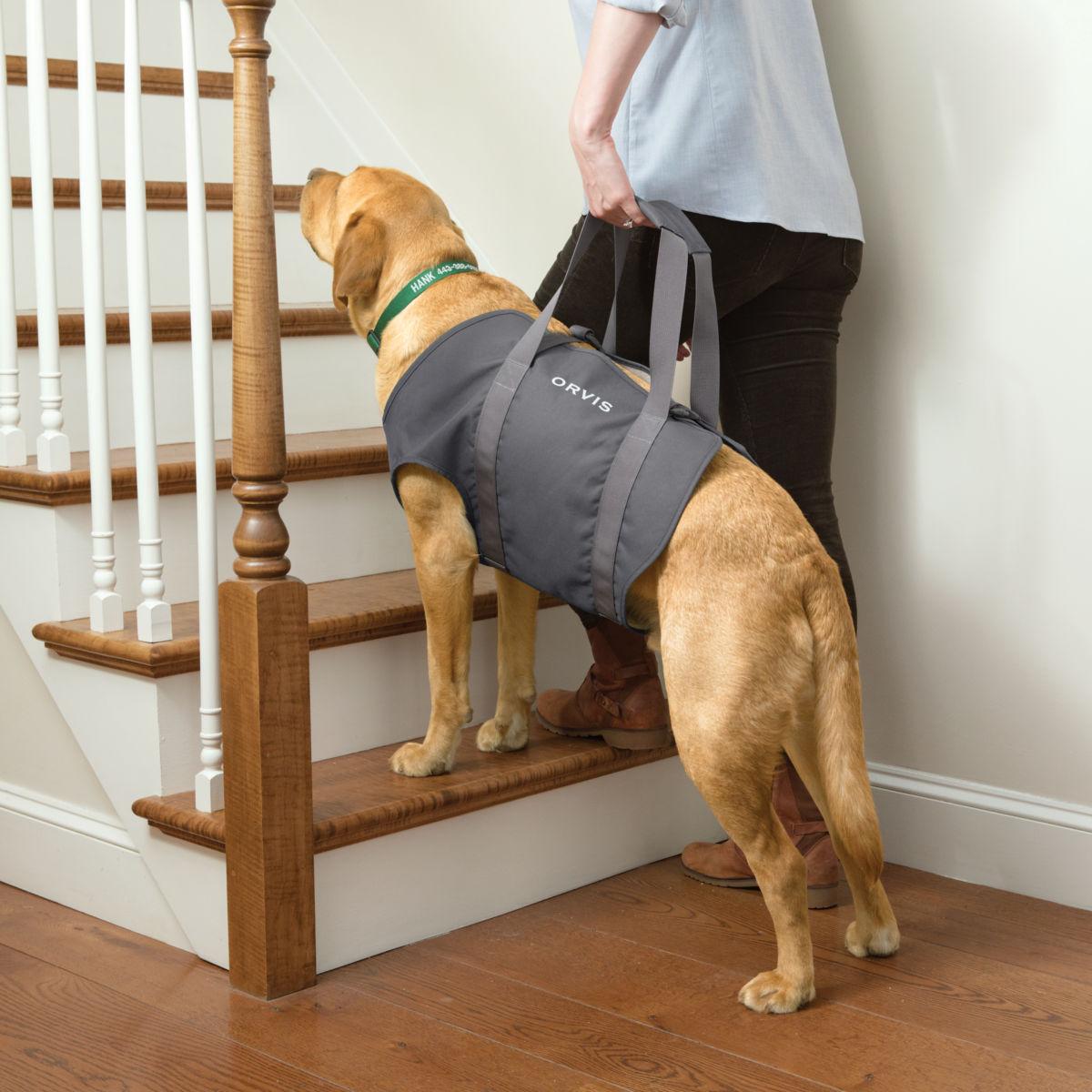 Dog Lift - image number 0