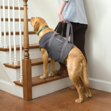 Dog Lift -