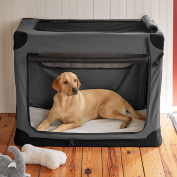 Orvis Hose-Off Folding Travel Crate -  image number 1