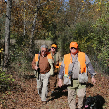 Complete Upland Hunting School at Orvis Sandanona, New York / 1-Day School -  image number 2