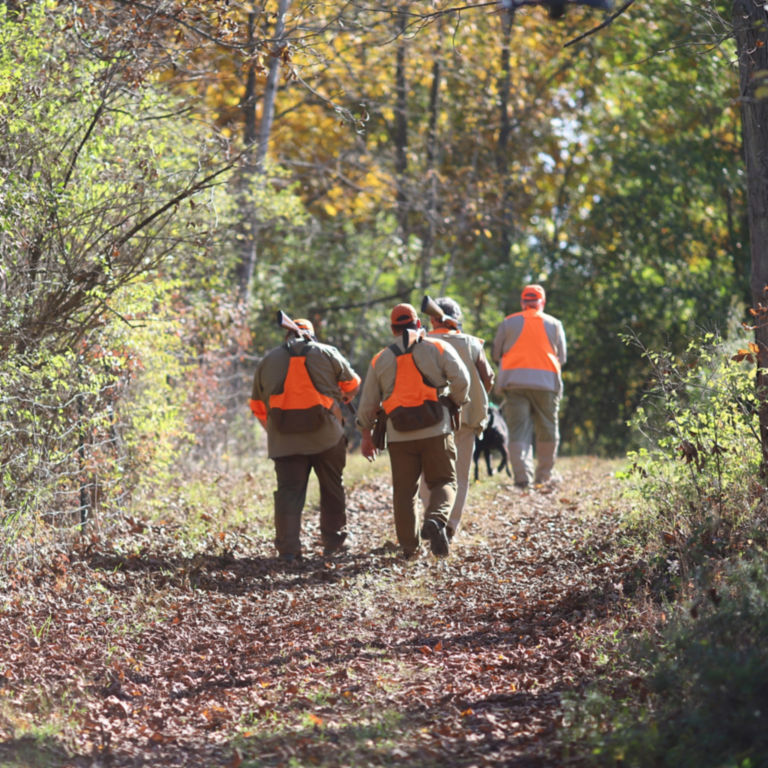 Complete Upland Hunting School at Orvis Sandanona, New York / 1-Day School -  image number 3