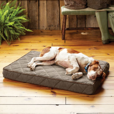 Orvis AirFoam Platform Dog Bed -