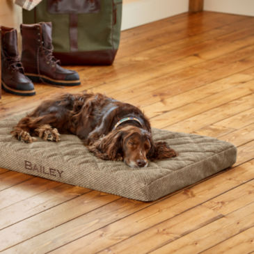 Orvis Memory Foam Platform Dog Bed -