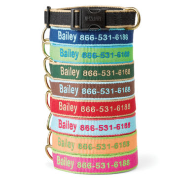 Personalized Bamboo Collar and Leash -
