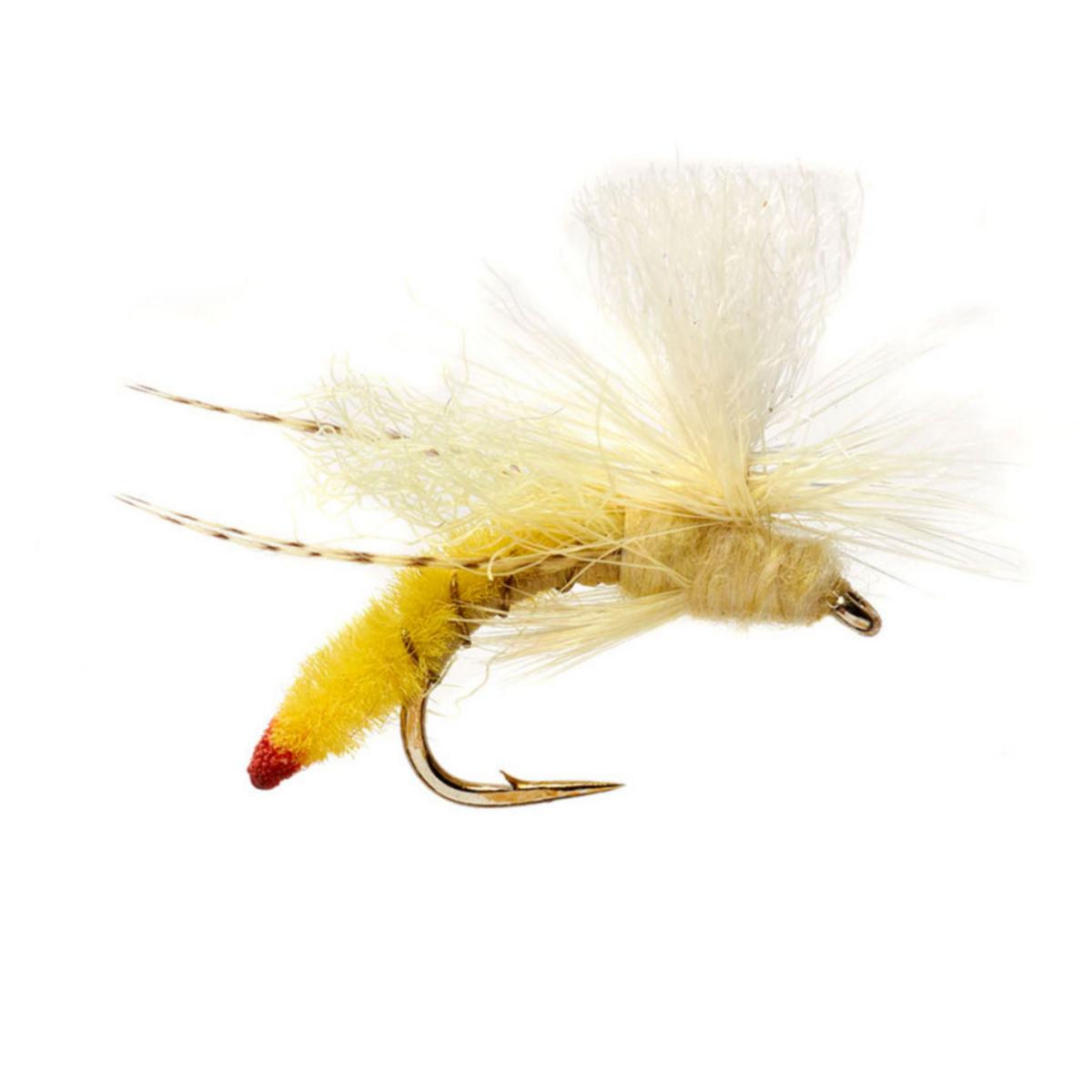 Spotlight Yellow Sally - image number 0