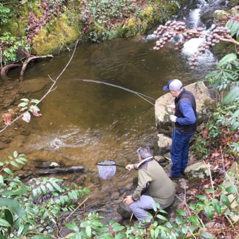 Sevierville, Tennessee Fly-Fishing School / 1-Day School -  image number 0