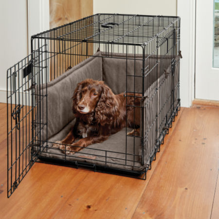 Dog laying down inside a crate
